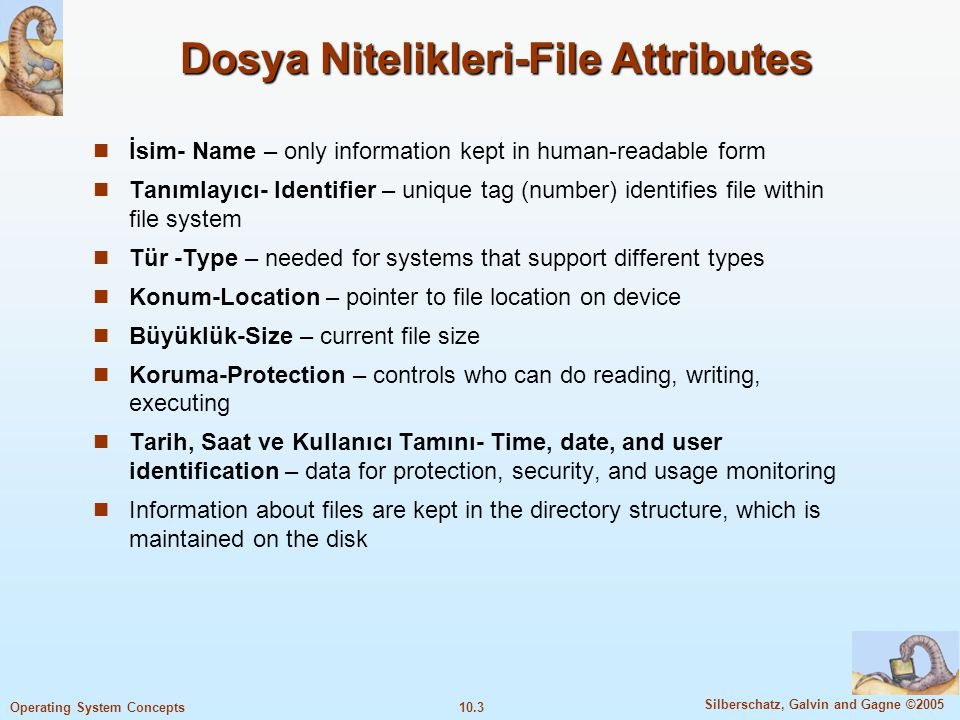 Dosya Nitelikleri-File Attributes