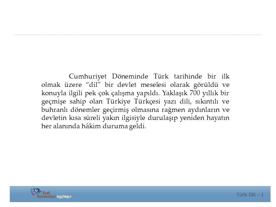 Cumhuriyet Döneminde Türk tarihinde bir ilk olmak üzere dil bir devlet meselesi olarak görüldü ve konuyla ilgili pek çok çalışma yapıldı. Yaklaşık 700 yıllık bir geçmişe sahip olan Türkiye Türkçesi yazı dili, sıkıntılı ve buhranlı dönemler geçirmiş olmasına rağmen aydınların ve devletin kısa süreli yakın ilgisiyle durulaşıp yeniden hayatın her alanında hâkim duruma geldi.