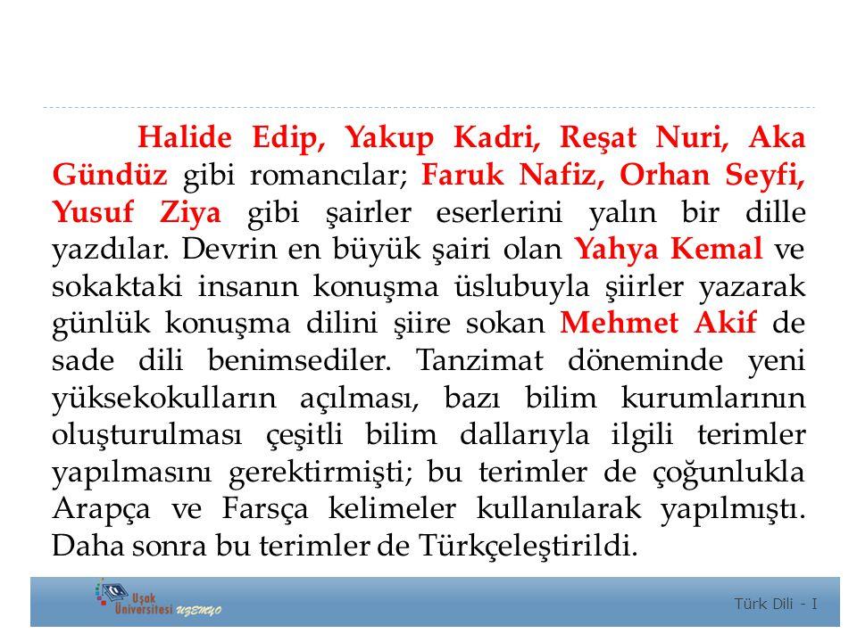Halide Edip, Yakup Kadri, Reşat Nuri, Aka Gündüz gibi romancılar; Faruk Nafiz, Orhan Seyfi, Yusuf Ziya gibi şairler eserlerini yalın bir dille yazdılar. Devrin en büyük şairi olan Yahya Kemal ve sokaktaki insanın konuşma üslubuyla şiirler yazarak günlük konuşma dilini şiire sokan Mehmet Akif de sade dili benimsediler. Tanzimat döneminde yeni yüksekokulların açılması, bazı bilim kurumlarının oluşturulması çeşitli bilim dallarıyla ilgili terimler yapılmasını gerektirmişti; bu terimler de çoğunlukla Arapça ve Farsça kelimeler kullanılarak yapılmıştı. Daha sonra bu terimler de Türkçeleştirildi.