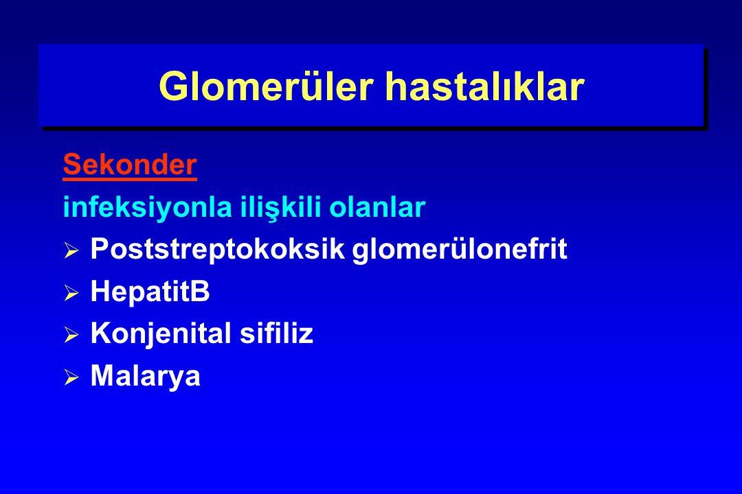 Glomerüler hastalıklar