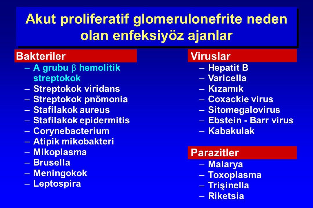 Akut proliferatif glomerulonefrite neden olan enfeksiyöz ajanlar