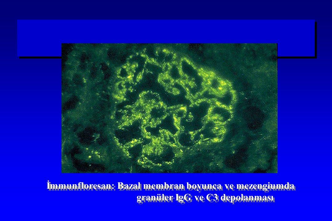 İmmunfloresan: Bazal membran boyunca ve mezengiumda
