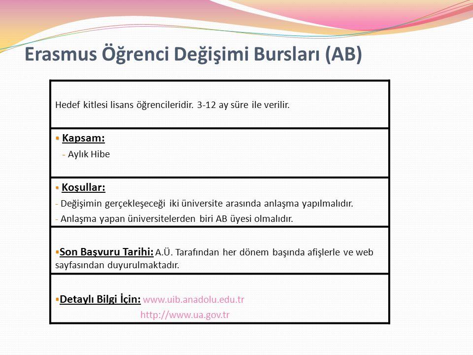 Erasmus Öğrenci Değişimi Bursları (AB)