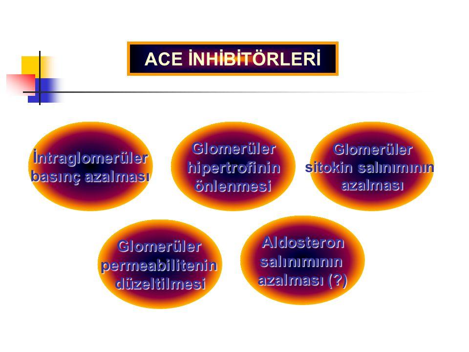 ACE İNHİBİTÖRLERİ Glomerüler İntraglomerüler hipertrofinin