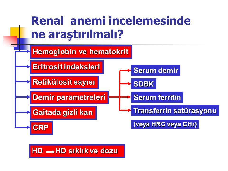 Renal anemi incelemesinde ne araştırılmalı