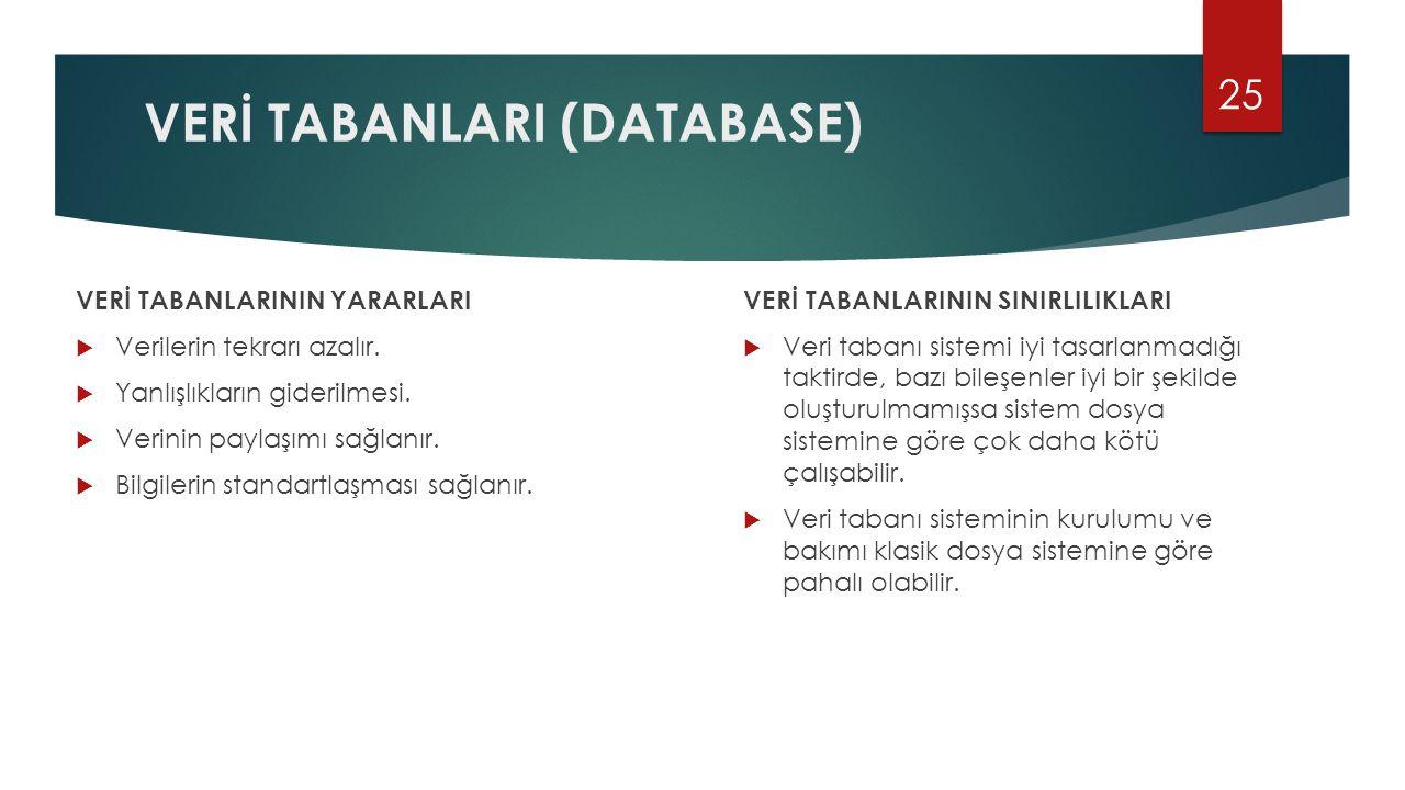 VERİ TABANLARI (DATABASE)