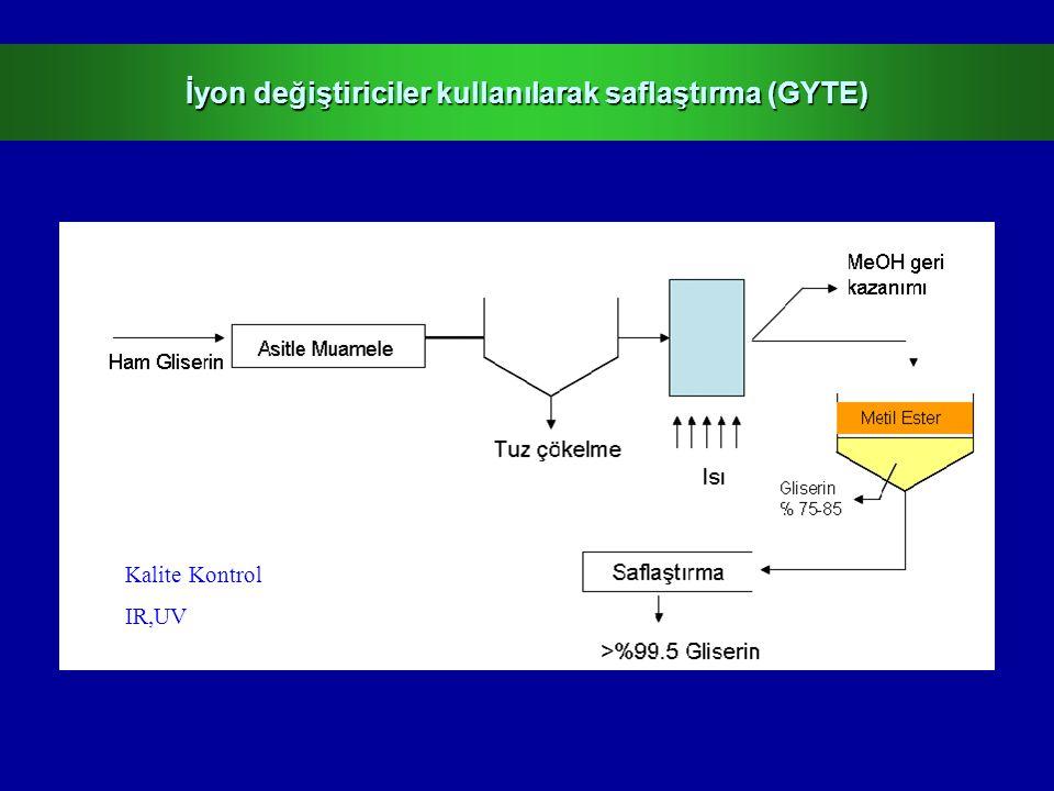 İyon değiştiriciler kullanılarak saflaştırma (GYTE)