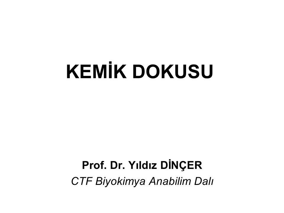 Prof. Dr. Yıldız DİNÇER CTF Biyokimya Anabilim Dalı