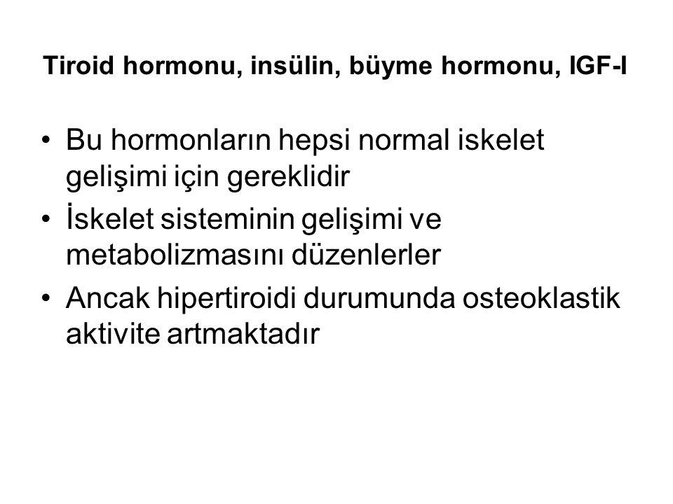Tiroid hormonu, insülin, büyme hormonu, IGF-I