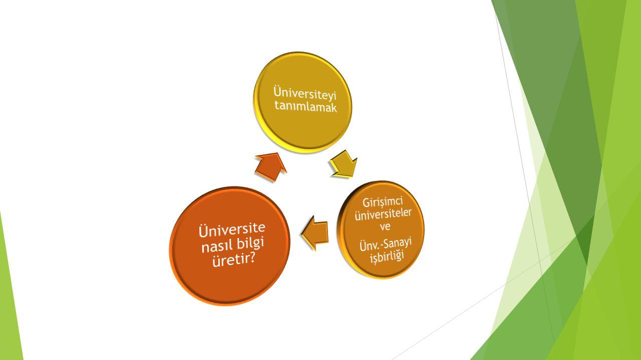 Üniversiteyi tanımlamak