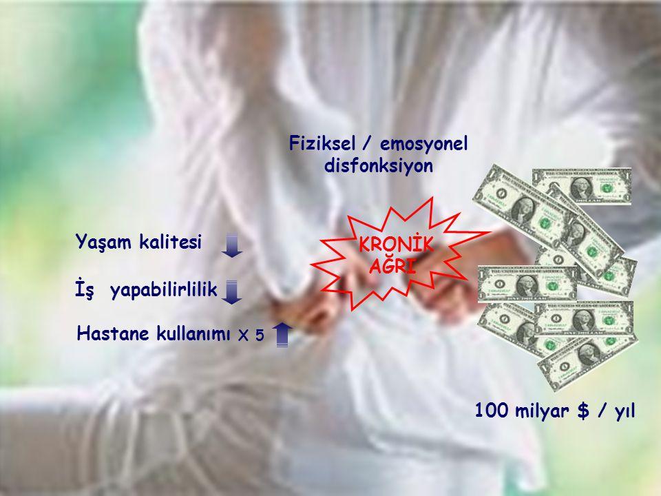 Fiziksel / emosyonel disfonksiyon KRONİK AĞRI Yaşam kalitesi