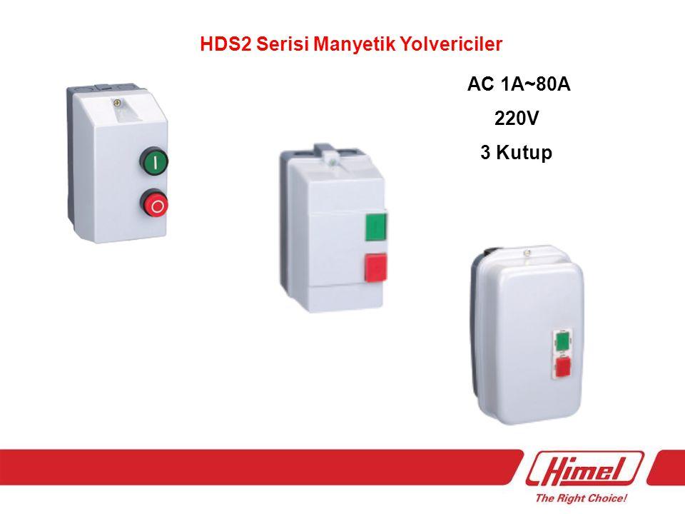 HDS2 Serisi Manyetik Yolvericiler