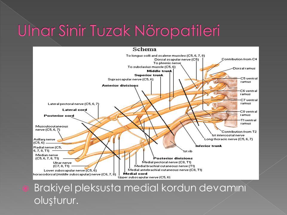 Ulnar Sinir Tuzak Nöropatileri