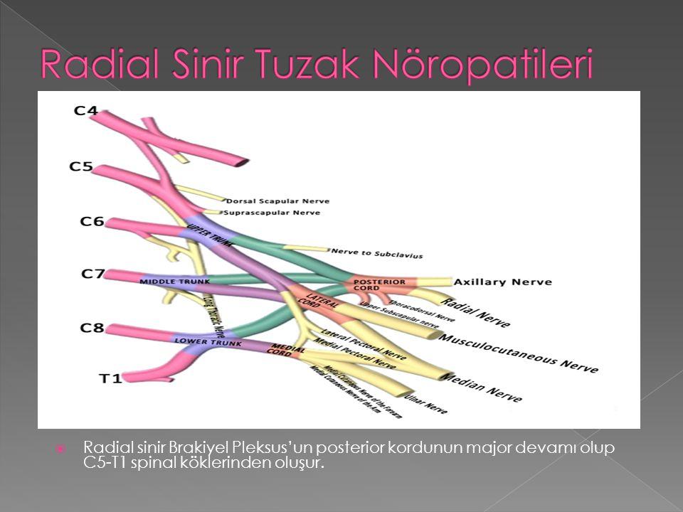 Radial Sinir Tuzak Nöropatileri