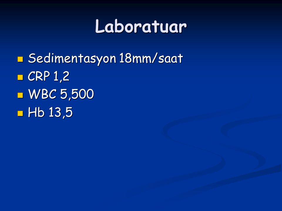 Laboratuar Sedimentasyon 18mm/saat CRP 1,2 WBC 5,500 Hb 13,5