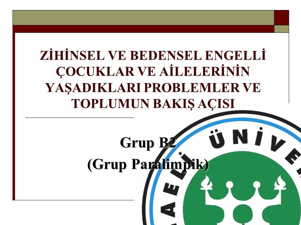 Grup B2 (Grup Paralimpik)
