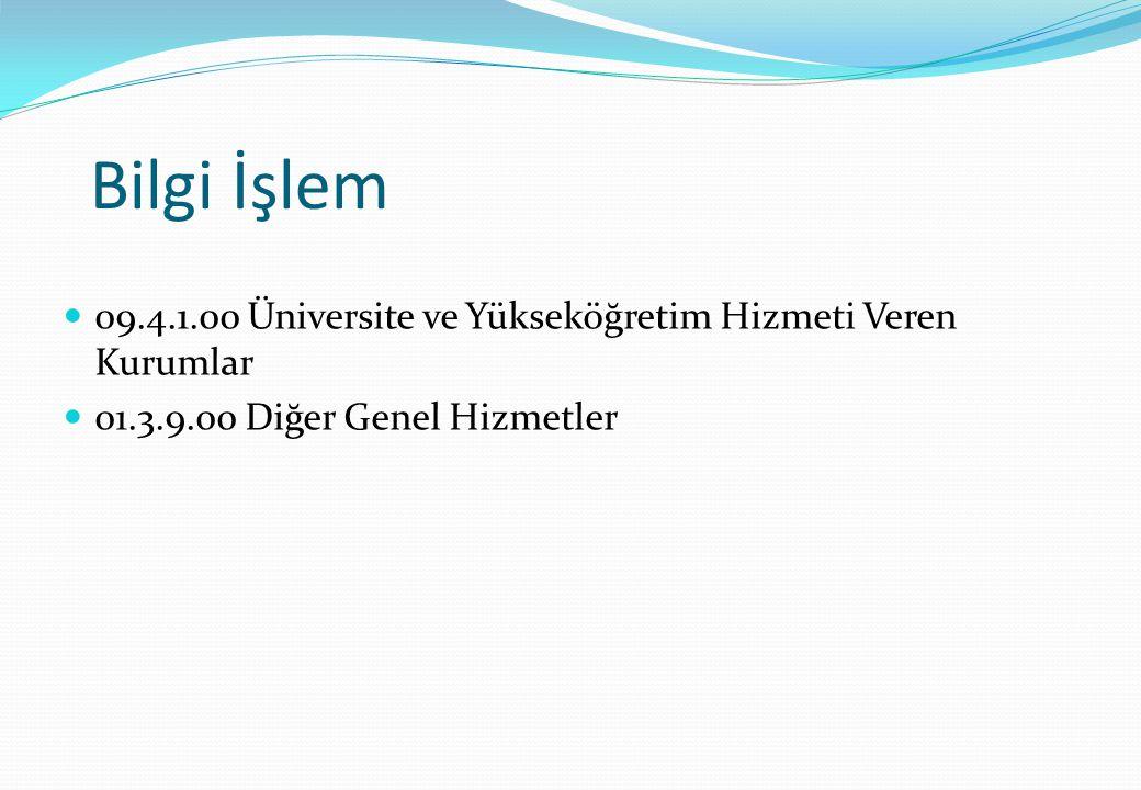 Bilgi İşlem 09.4.1.00 Üniversite ve Yükseköğretim Hizmeti Veren Kurumlar.