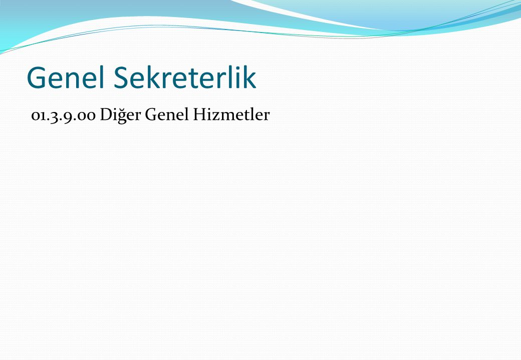 Genel Sekreterlik 01.3.9.00 Diğer Genel Hizmetler