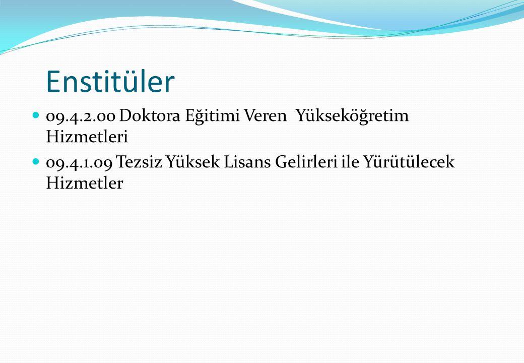 Enstitüler 09.4.2.00 Doktora Eğitimi Veren Yükseköğretim Hizmetleri
