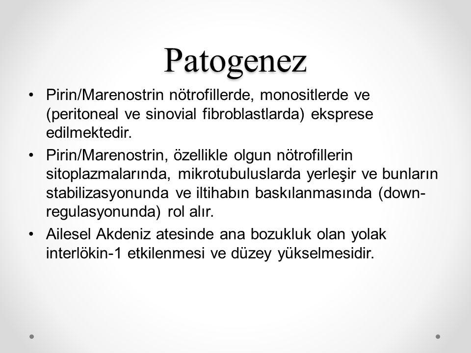 Patogenez Pirin/Marenostrin nötrofillerde, monositlerde ve (peritoneal ve sinovial fibroblastlarda) eksprese edilmektedir.