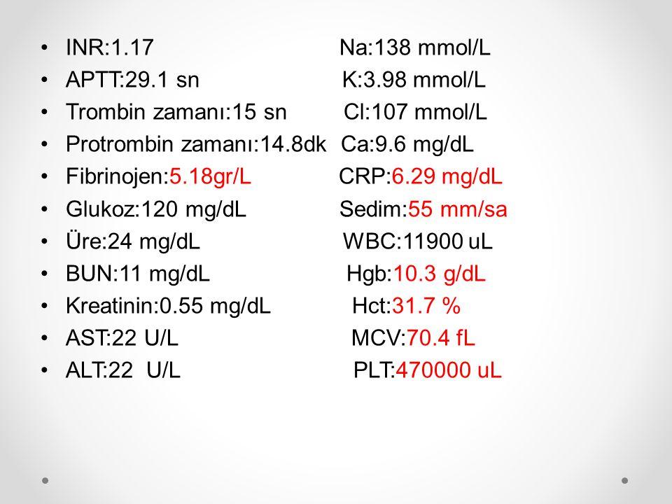 INR:1.17 Na:138 mmol/L APTT:29.1 sn K:3.98 mmol/L.