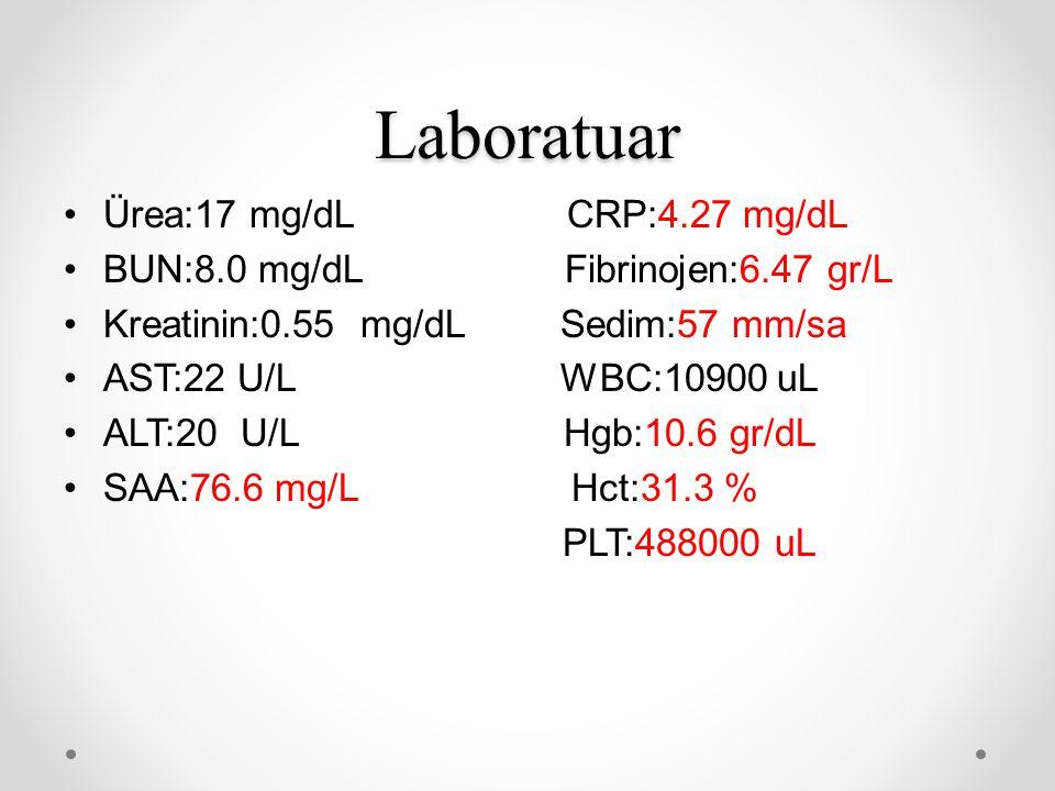 Laboratuar Ürea:17 mg/dL CRP:4.27 mg/dL