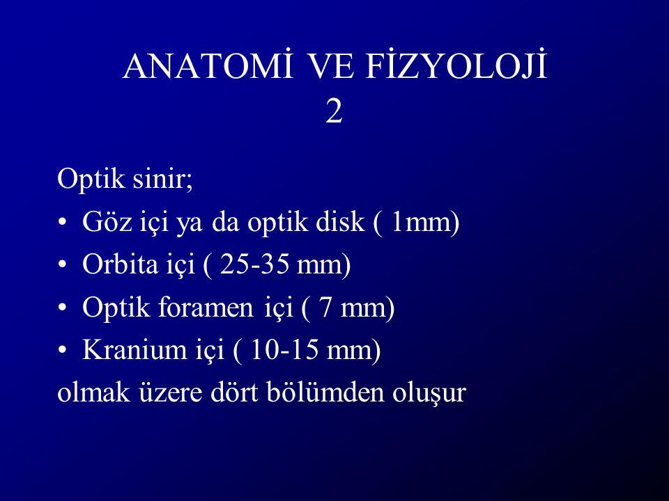 ANATOMİ VE FİZYOLOJİ 2 Optik sinir; Göz içi ya da optik disk ( 1mm)