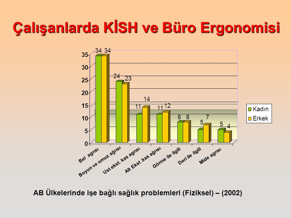 AB Ülkelerinde işe bağlı sağlık problemleri (Fiziksel) – (2002)
