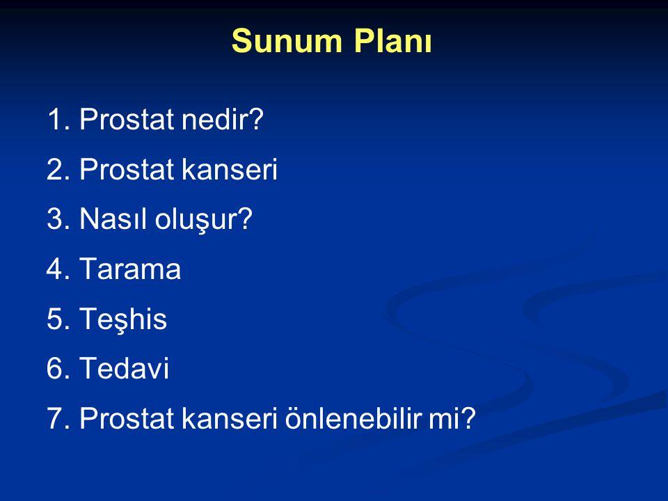 Sunum Planı 1. Prostat nedir 2. Prostat kanseri 3. Nasıl oluşur