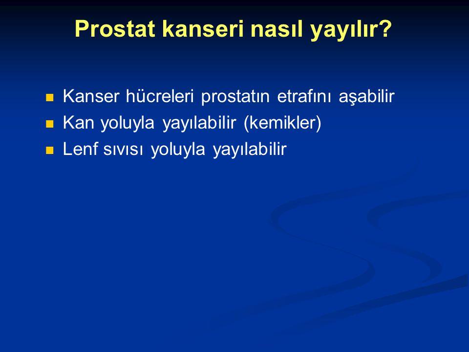 Prostat kanseri nasıl yayılır