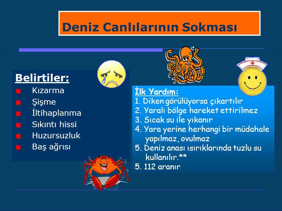 Deniz Canlılarının Sokması