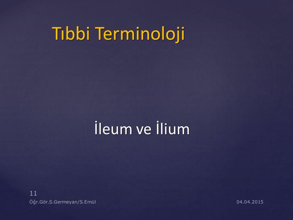 Tıbbi Terminoloji İleum ve İlium Öğr.Gör.S.Germeyan/S.Emül 09.04.2017