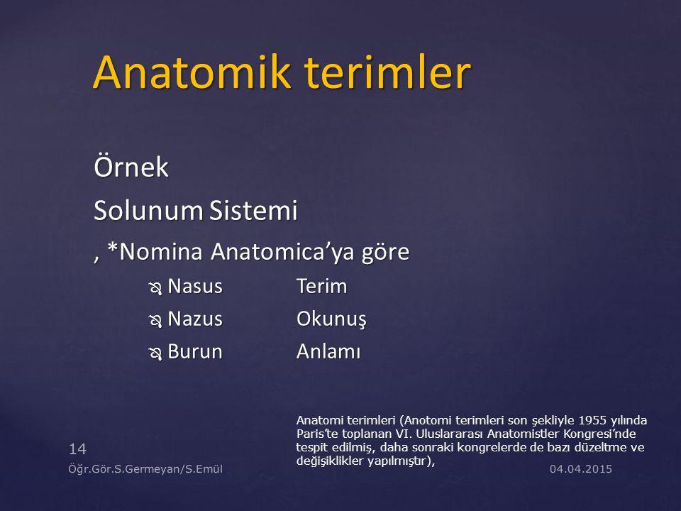 Anatomik terimler Örnek Solunum Sistemi , *Nomina Anatomica'ya göre