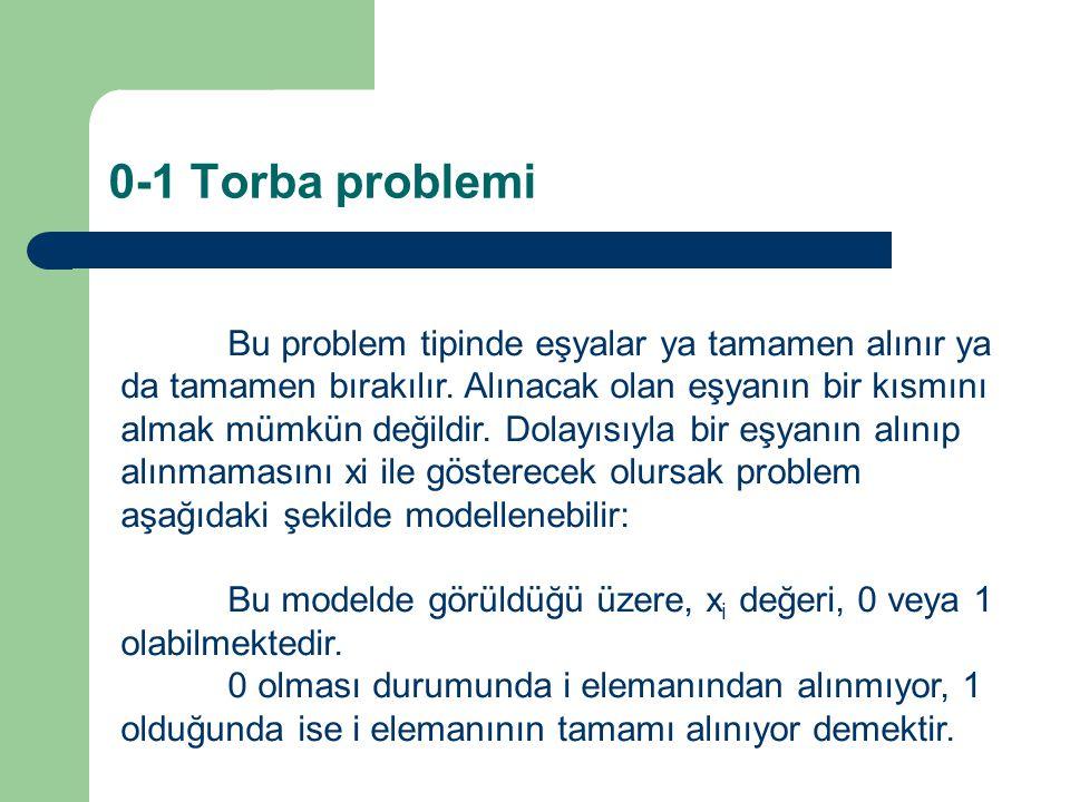 0-1 Torba problemi