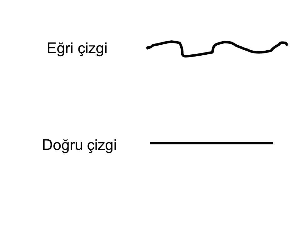 Eğri çizgi Doğru çizgi Doğru çizgi