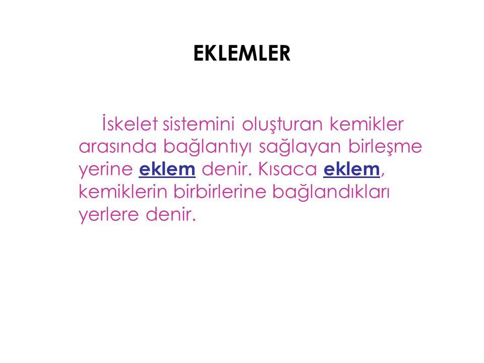 EKLEMLER