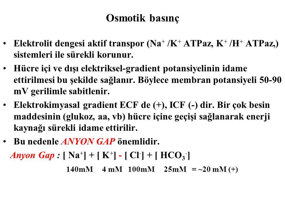 Osmotik basınç Elektrolit dengesi aktif transpor (Na+ /K+ ATPaz, K+ /H+ ATPaz,) sistemleri ile sürekli korunur.