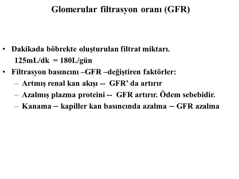 Glomerular filtrasyon oranı (GFR)