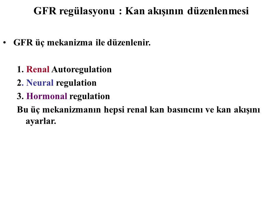 GFR regülasyonu : Kan akışının düzenlenmesi