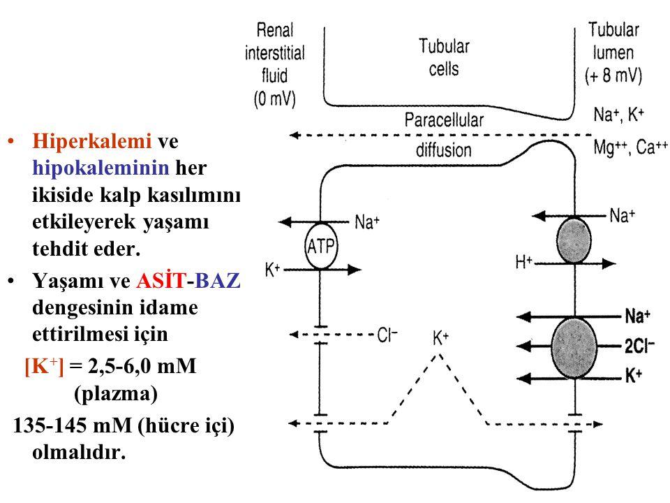 Hiperkalemi ve hipokaleminin her ikiside kalp kasılımını etkileyerek yaşamı tehdit eder.