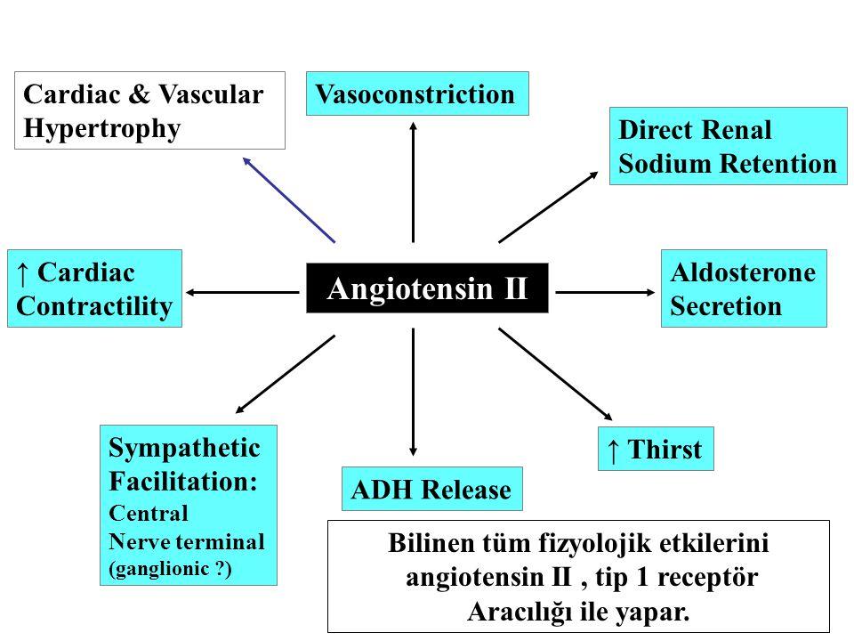 Bilinen tüm fizyolojik etkilerini angiotensin II , tip 1 receptör