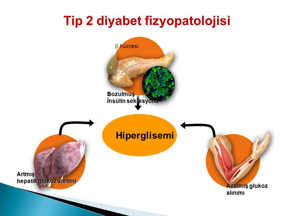 Tip 2 diyabet fizyopatolojisi