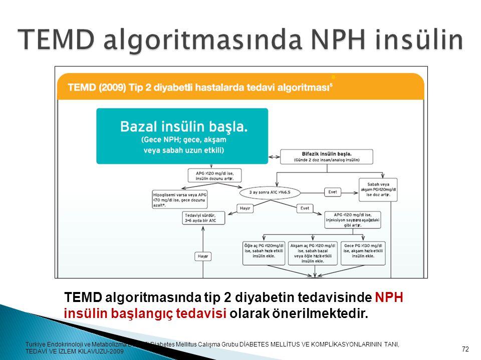 TEMD algoritmasında NPH insülin