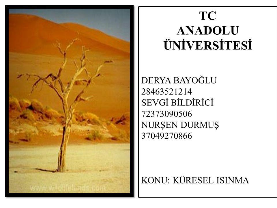 TC ANADOLU ÜNİVERSİTESİ