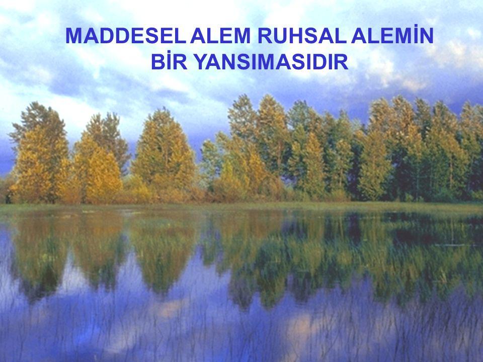 MADDESEL ALEM RUHSAL ALEMİN