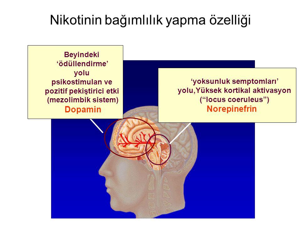 Nikotinin bağımlılık yapma özelliği