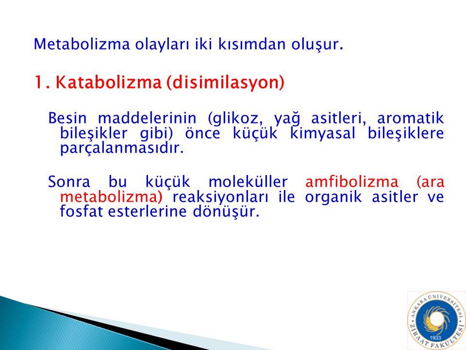 1. Katabolizma (disimilasyon)