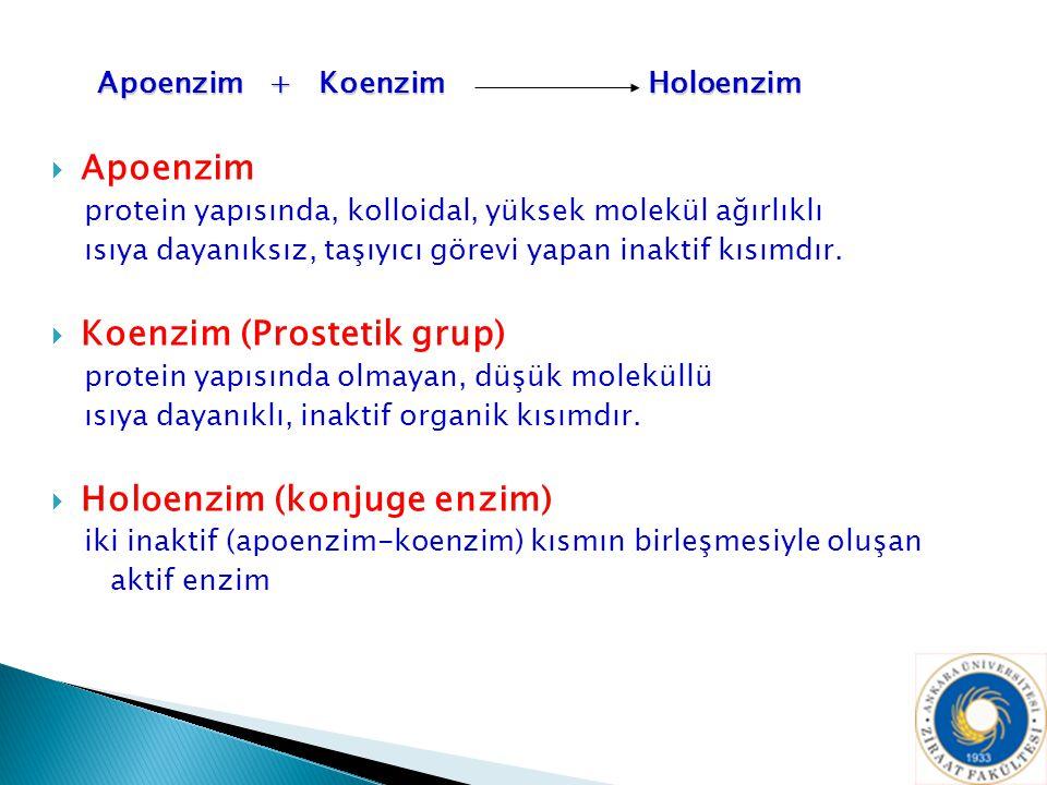 Koenzim (Prostetik grup)