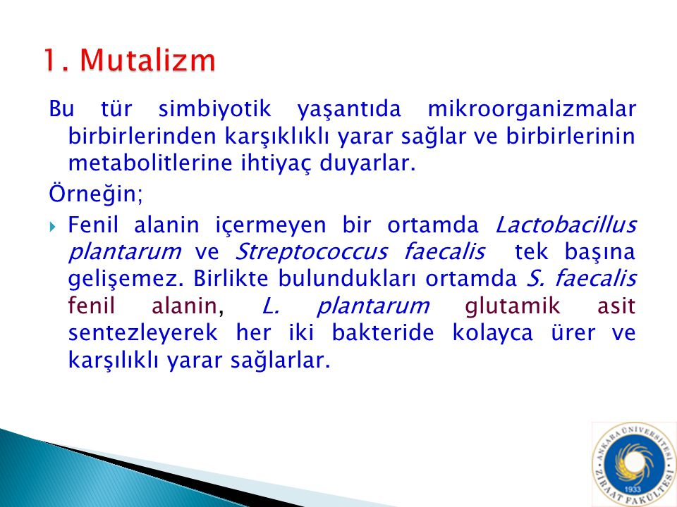 1. Mutalizm
