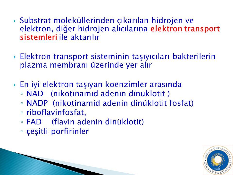 Substrat moleküllerinden çıkarılan hidrojen ve elektron, diğer hidrojen alıcılarına elektron transport sistemleri ile aktarılır